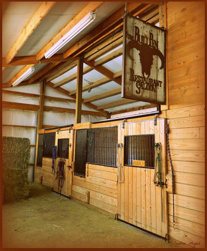 Simple Tips for Staging and Photographing a Horse Property