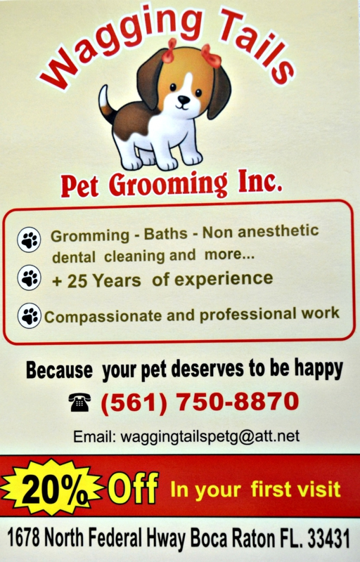 Wagging tails pet groomer opens in boca raton florida 20 off for A wagging tail pet salon