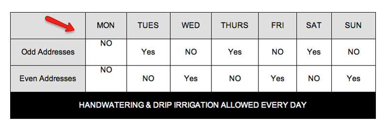 cary nc watering schedules