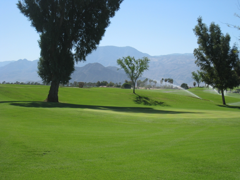 Indio Golf Course Homes Indian Springs Country Club
