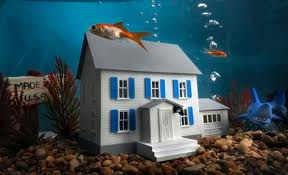 Wynchase underwater homes