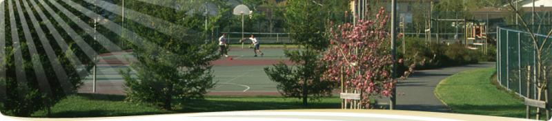 magnolia park, basket ball courts, students