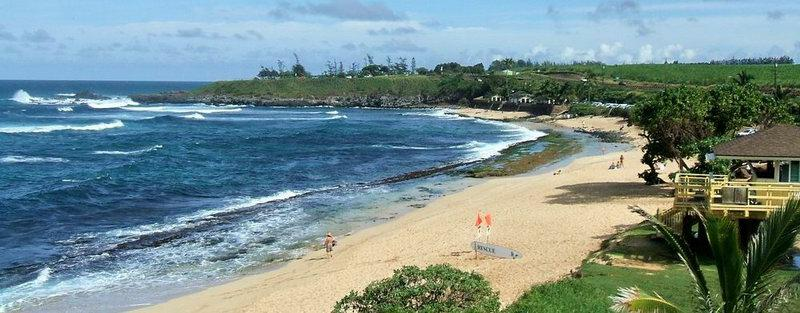 Beach scene on maui's north shore