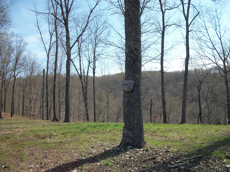 5 Acres For Sale Christian County MO