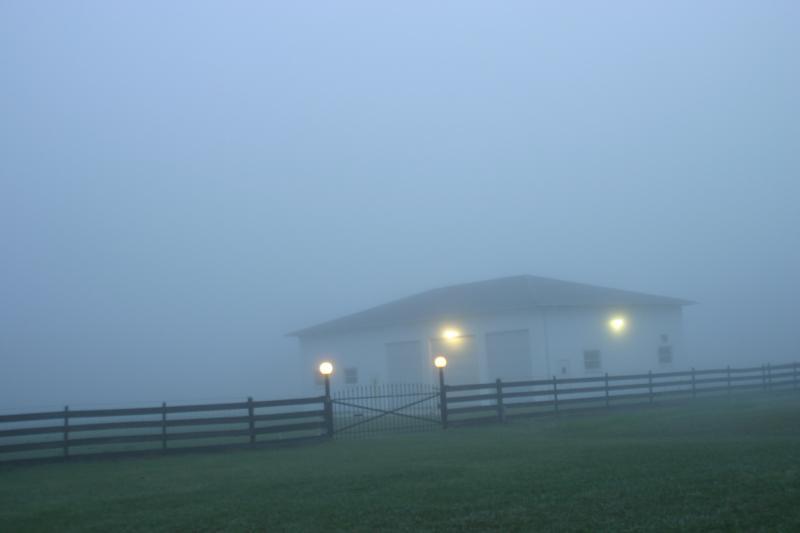 Brooksville Dancing Buffalo Ranch For Sale Amazing 51 53