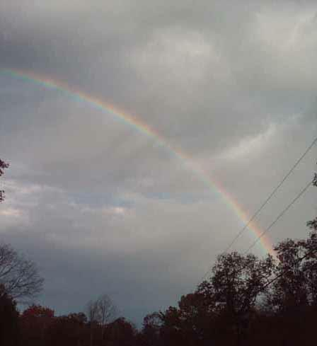 Rainbow After The Rain In Big South Fork Tennessee