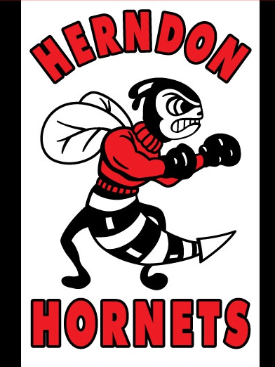 Herndon High Flag