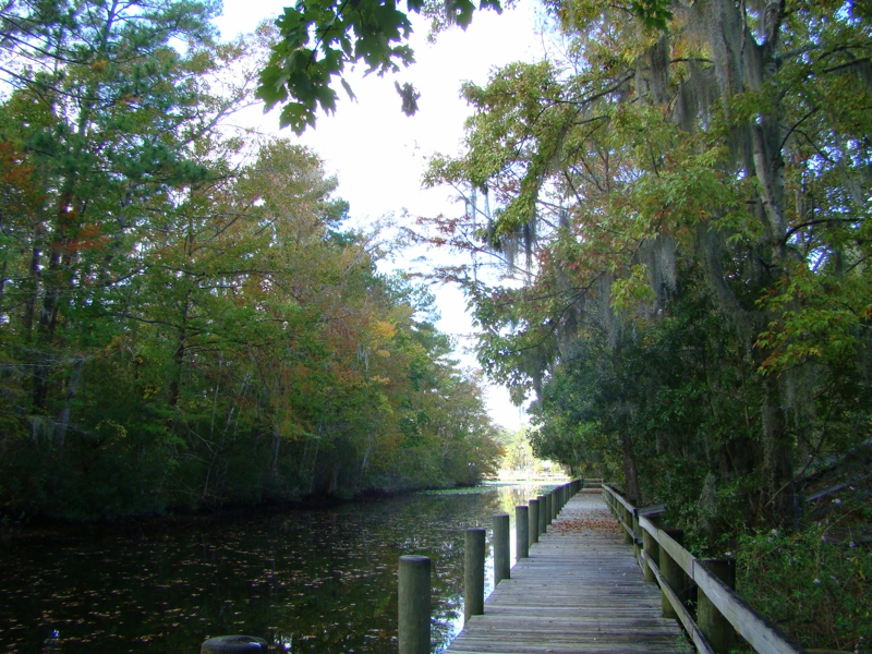 Trout Creek Park in St Augustine Florida