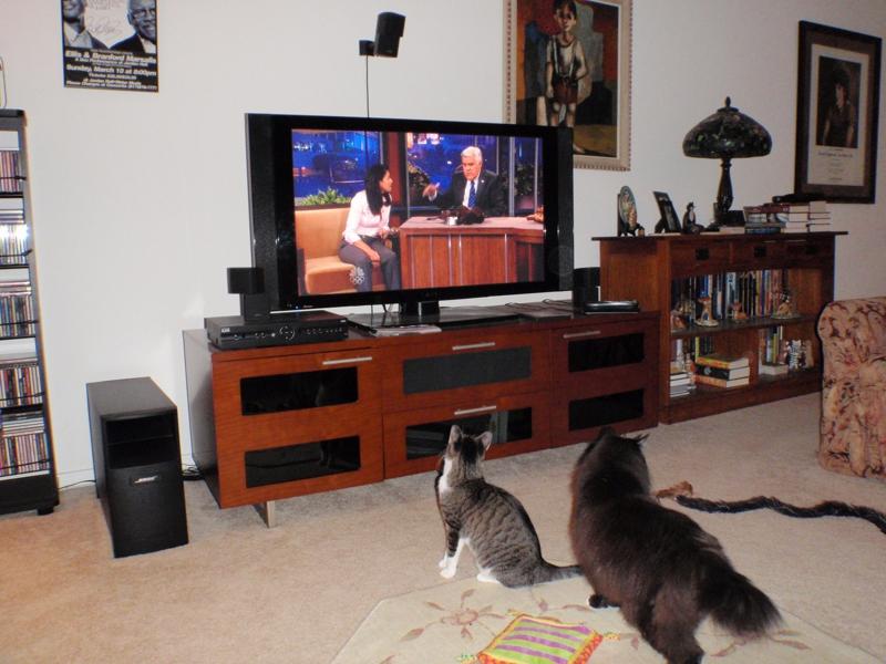 Douggy & Jill watching Jay Leno