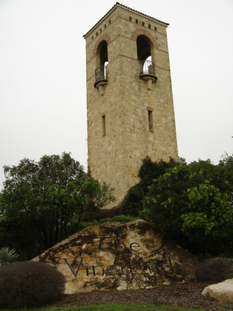 The Vineyard In San Antonio Real Estate Profile