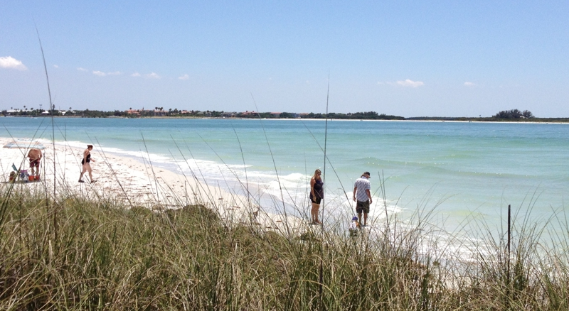 Palm Harbor Beach Fl The Best Beaches In World
