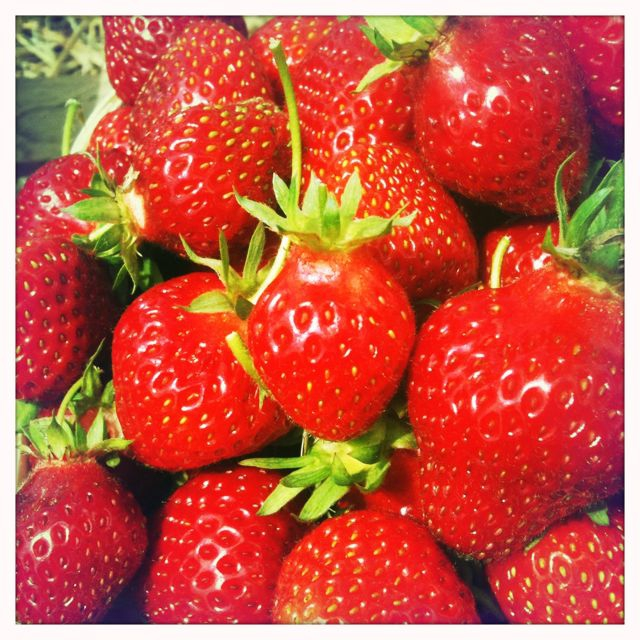 Wordless Wednesday - STRAWBERRIES!  The taste of summer!