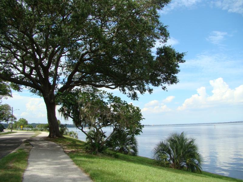 St Johns River Orange Park Fl