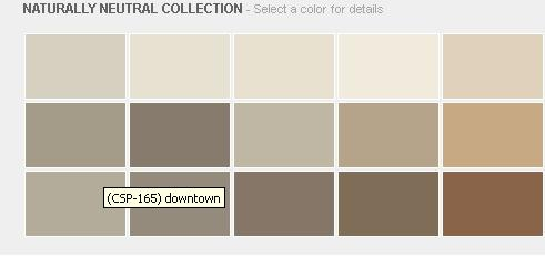 Elegant Glamorous 80 Earth Colors Paint Design Decoration Of Best 25 Nice Ideas