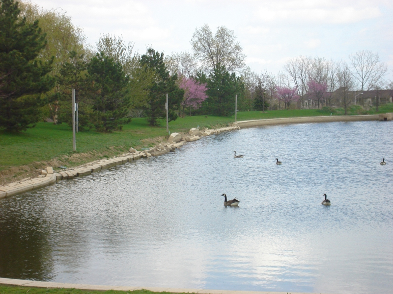 country lakes broadview heights ohio