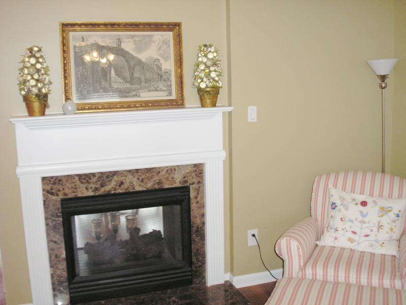 Home Staging Fireplace Before