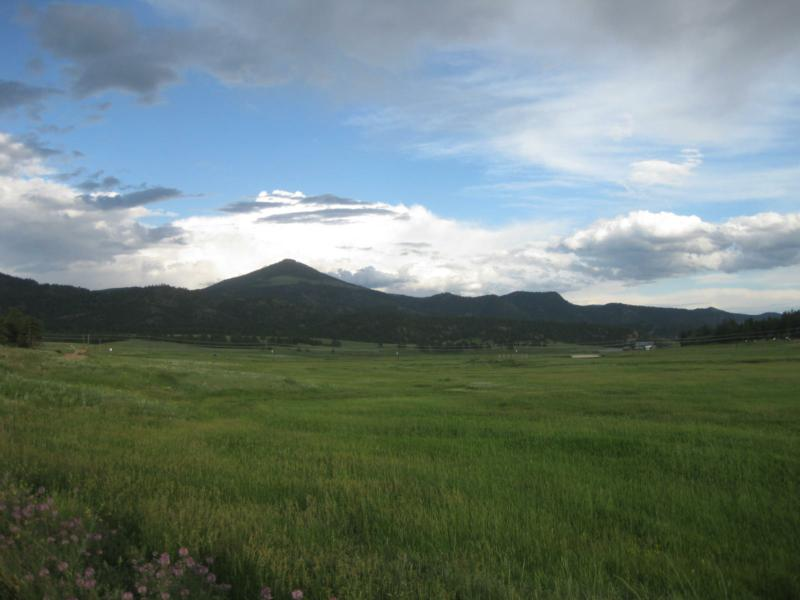 Colorado Summer Pastures