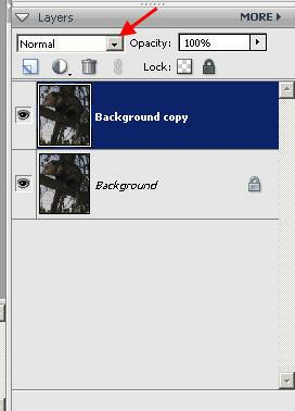how to add two images into photoshop elements