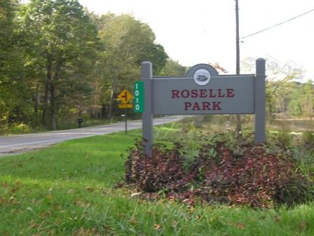 ar119783755234225 Roselle Park in Ada Michigan ~ Nature Preserve on the Grand River