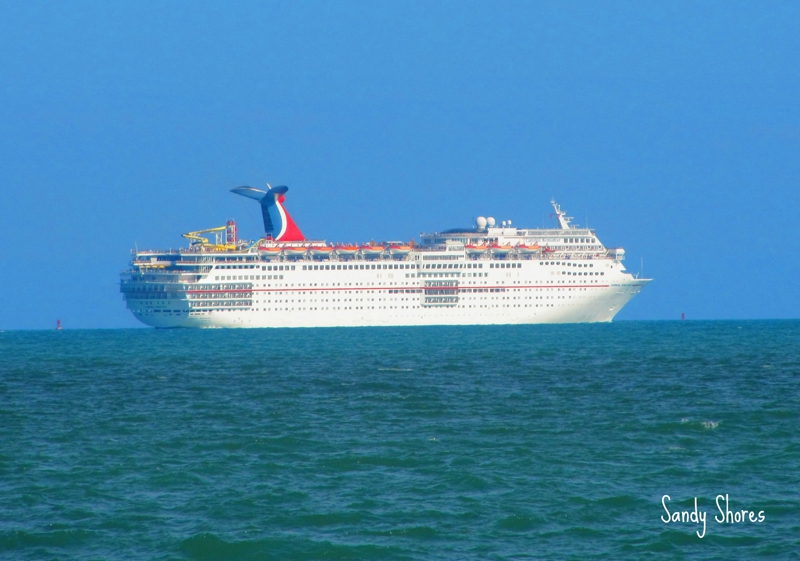 Port Canaveral Cruises Heading Out To Sea  Your Brevard Real Estate News