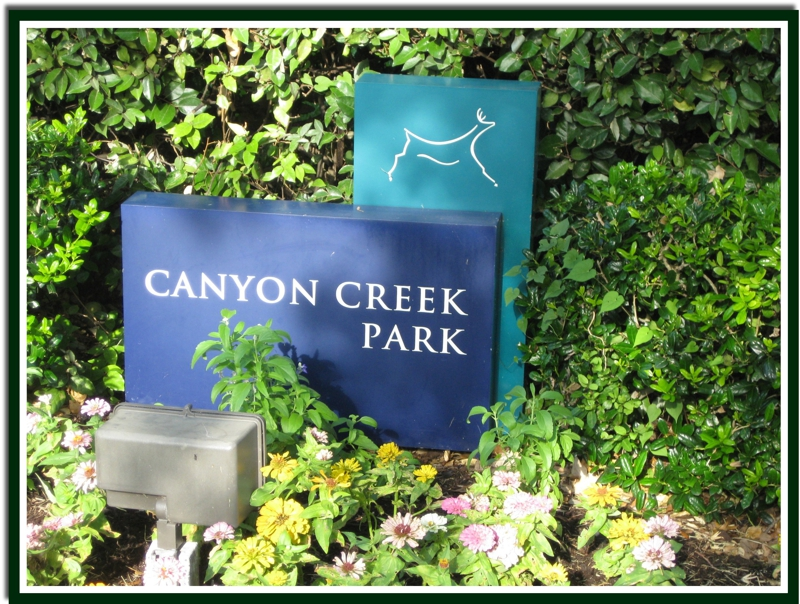 Canyon Creek park