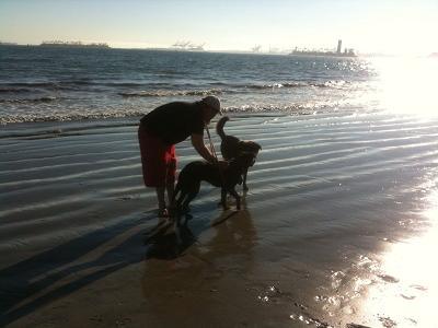 Rosie's Dog Beach photo by Andi Grant