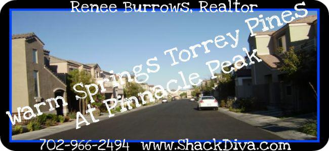 Warm Springs Torrey Pines at Pinnacle Las Vegas Homes