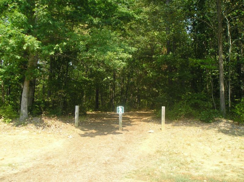 Hiking Trails in Bond Park