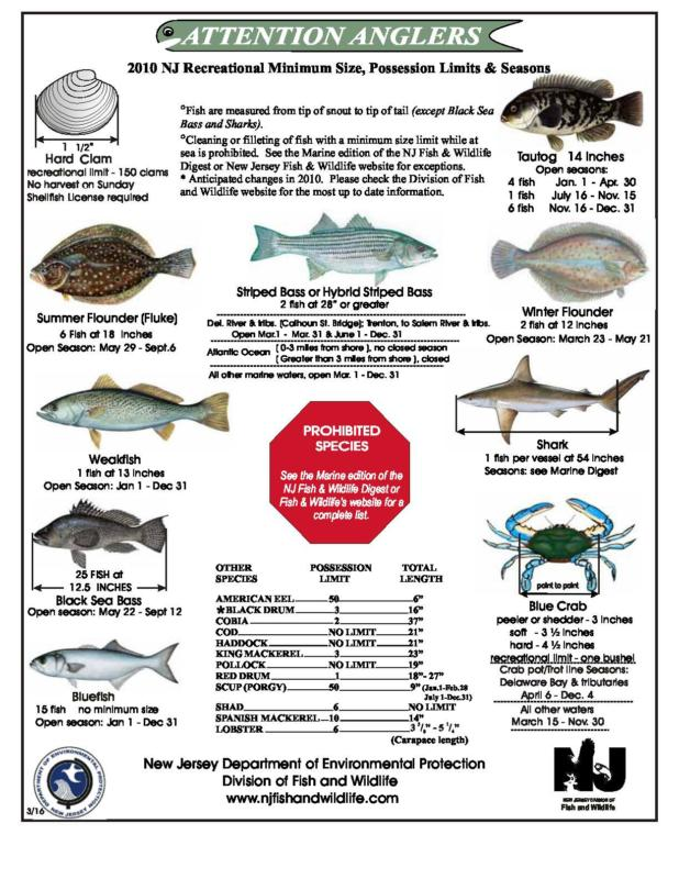 2010 nj fishing recreational limits sizes and seasons for Nj saltwater fishing registry