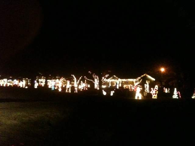 Oconee Co. Ga Christmas lights by Diane Boykin