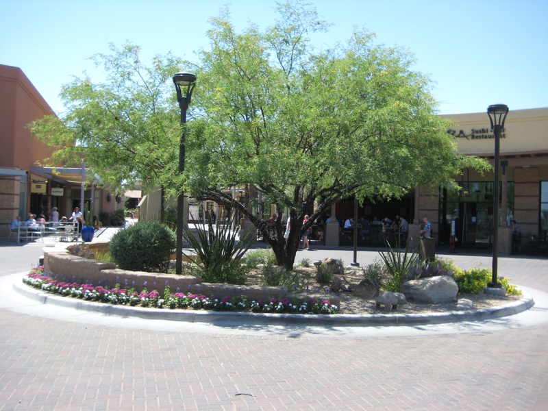 Visiting La Encantada In The Tucson Foothills