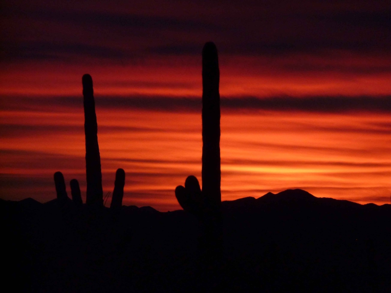 Arizona Sunset by Mike Jones