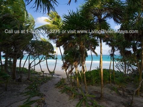 Oceanfront home for sale Tulum
