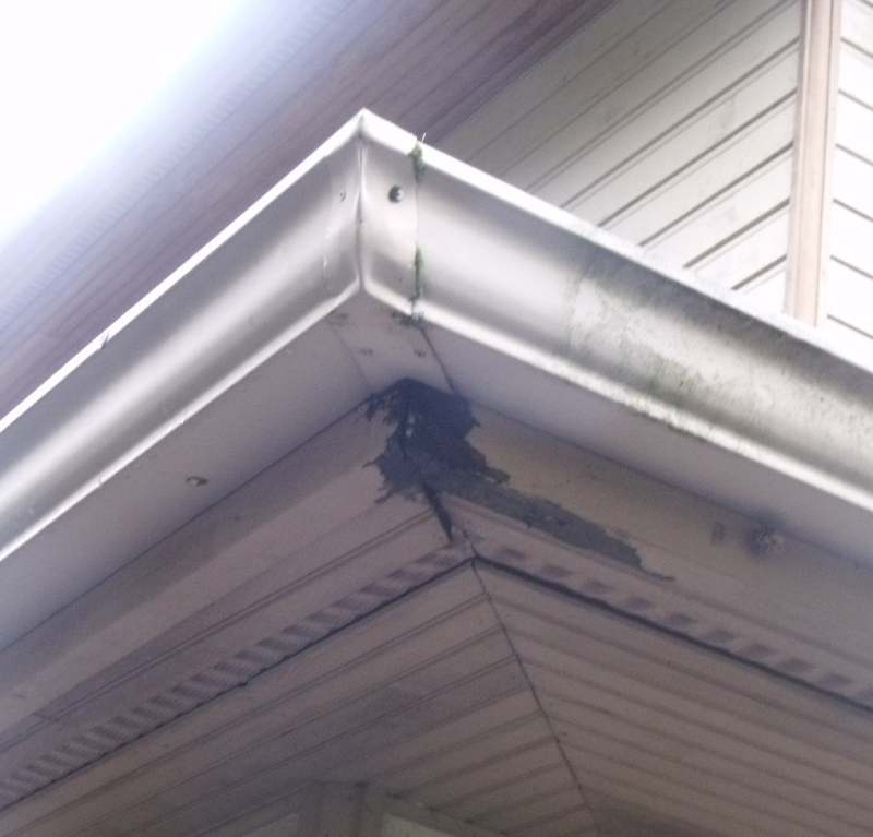 Ferndale Home Inspector King Of The House Gutter Corners