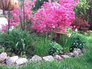 Spring Gardens in Baltimore 410-530-2400