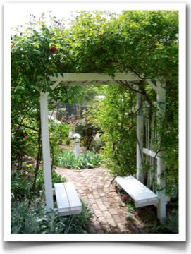 Yard entrace pergola with rose vines