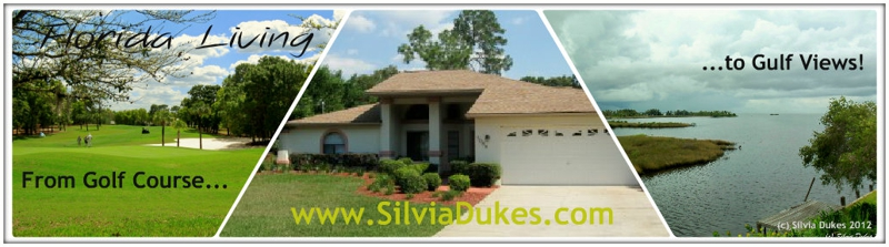 Hernando County Homes for Sale Photos by Silvia Dukes