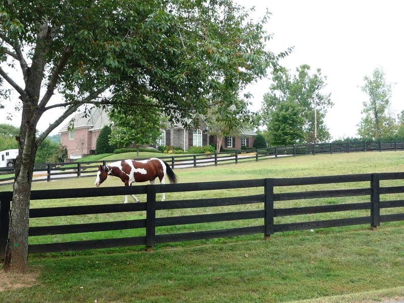 Nashville Tn Area Farm And Equestrian Properties Homes