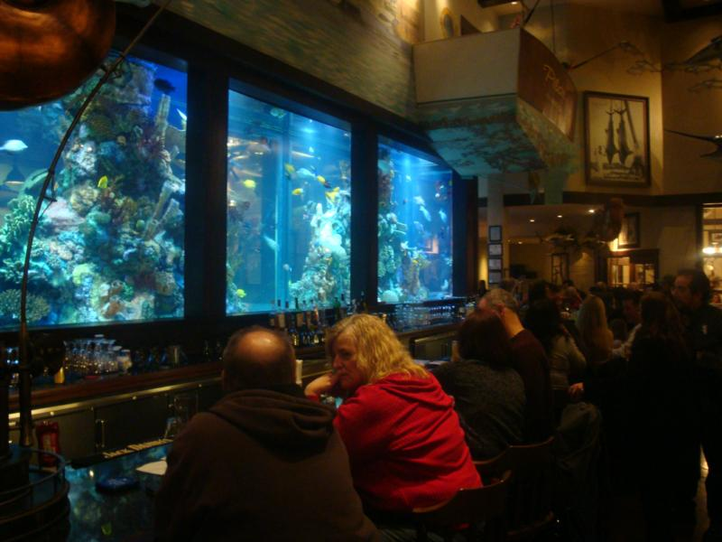 Bass Pro Shop Fish Tank Image Search Results