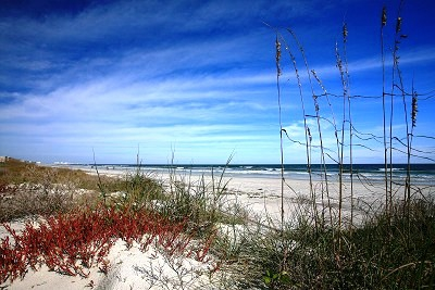 Ponce Inlet Real Estate - Oceanfront