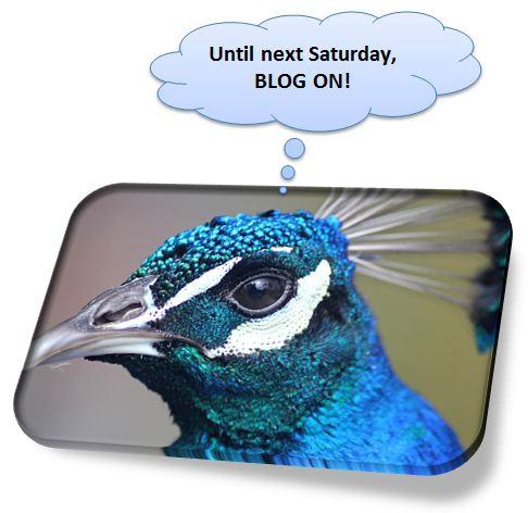 Blog on!