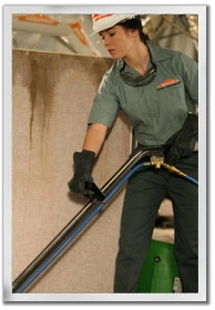 servpro carpet cleaning bronxville NY 10708