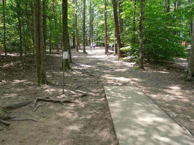 Burke Lake Park Disc Golf Fairway