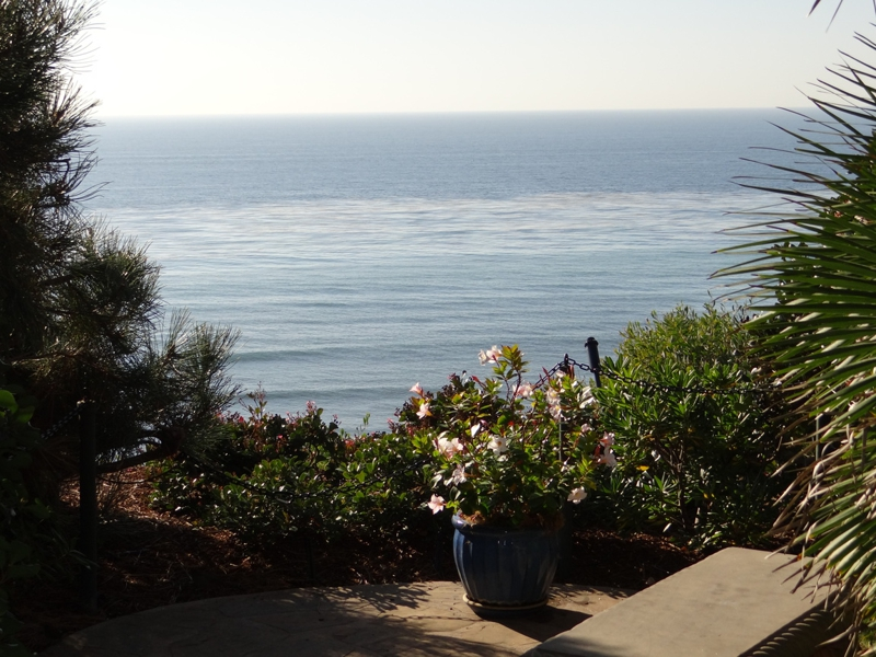 A Winter Walk Through The Meditation Gardens In Encinitas Ca