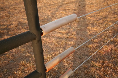 Mane protectors where the cable connects to the posts
