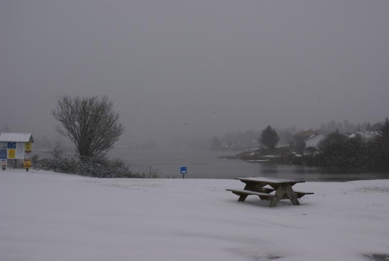 Pictures/Photos of Dec 2008 snow storm @ Ocean Shores