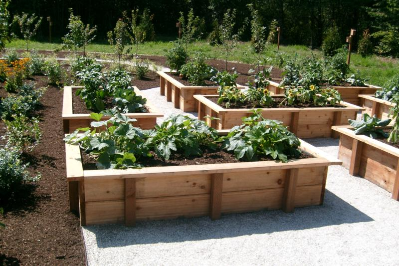 Outdoor Vegetable Garden Boxes httpactiveraincomblogsview1200867