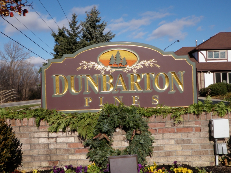 Novi Michigan Real Estate Dunbarton Pines
