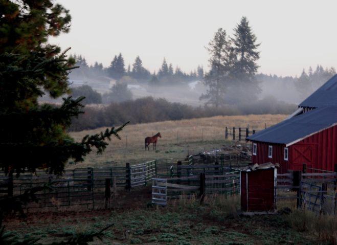 Horse Property For Sale In Hayden Idaho