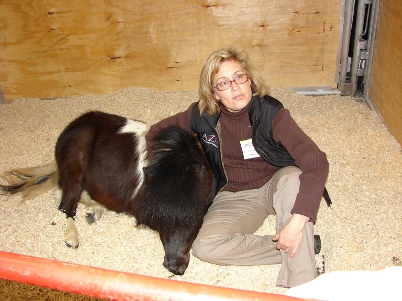 Pennsylvania Horse World Expo